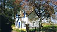 Holiday Cottages to let on our beautiful Scottish estate.