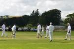 cricket_at_kirkwood_2013a